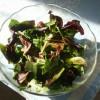 Salata od listova maslačka i radiča