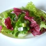 Radič i zelena salata