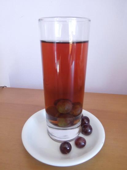 Dunav koktel
