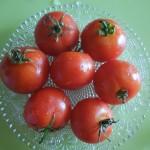 1 paradajz
