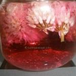 Sirće ocat sa cvetovima vlasca