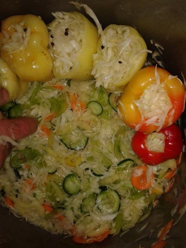 sarena-salata-i-paprike-s-kupusom