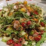 Salata sa začinskim biljem