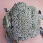 Heljda i brokoli sa pečurkama