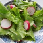 Prolećna salata