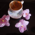 Prirodno cveće za poslastice