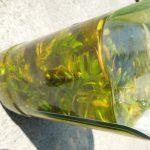 Kantarionovo ulje kako se pravi i za šta je dobro kao lek