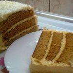 Djokin kolac sa dzemom od kajsija i kokosom
