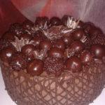 Cokoladna torta s ogradicom